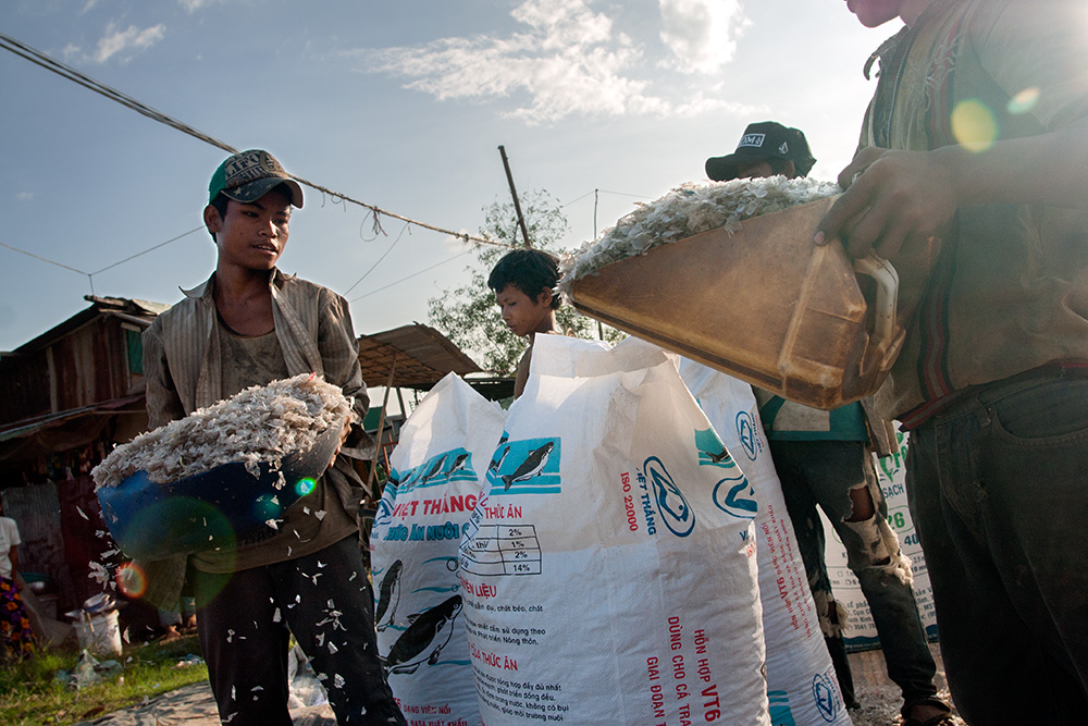 Young men load minced recycled plastic into bags in front of a recycling warehouse in Siem Reap.